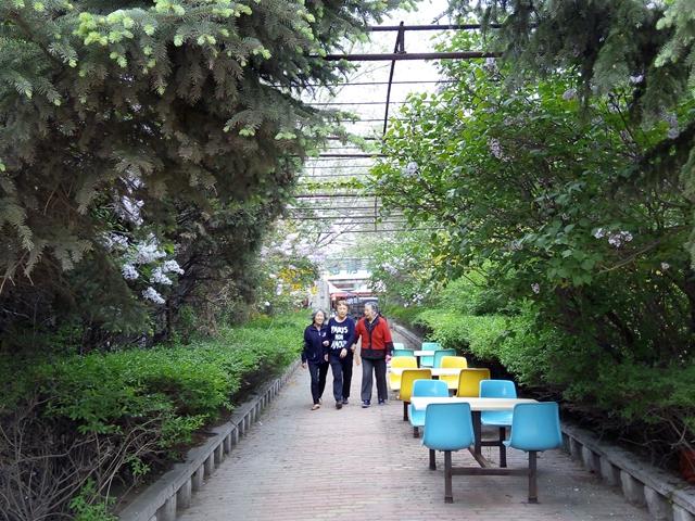 4280平的超大花园
